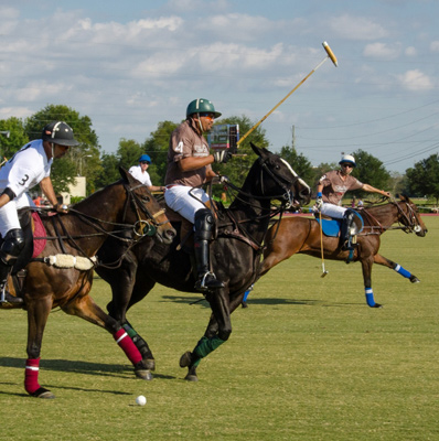 Polo match with horses and jockeys